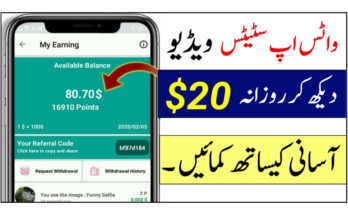 Earn Money From Status Video Earn Daily 20$ Status Video
